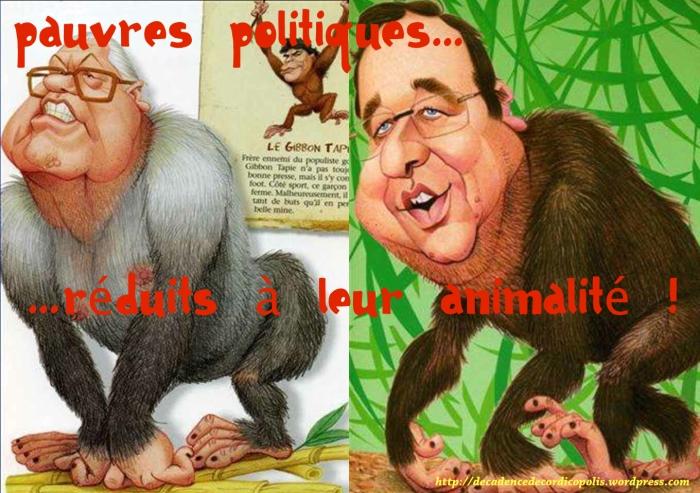 montage caricatures Morchoisne