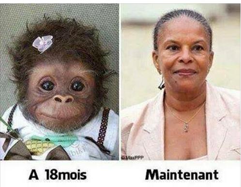 Photomontage-Taubira-singe-1