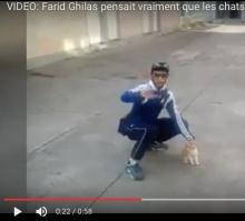 crevure-farid-ghilas-2014