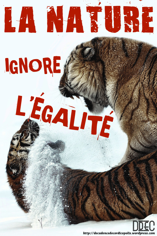 montage-la-nature-aborre-legalite-4