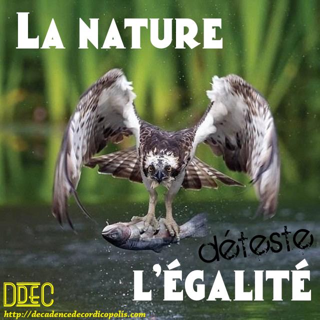 Nature vs égalité