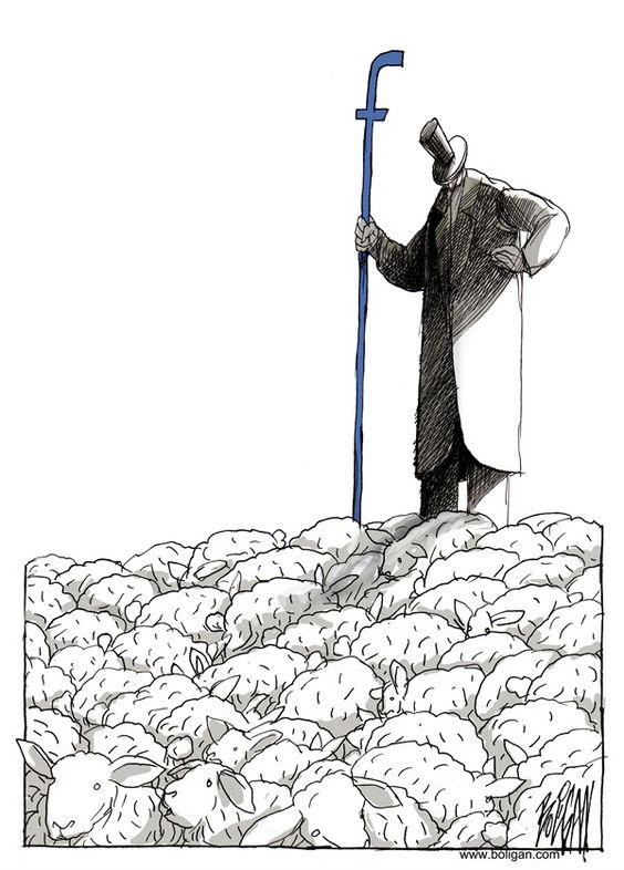 fb et les moutons