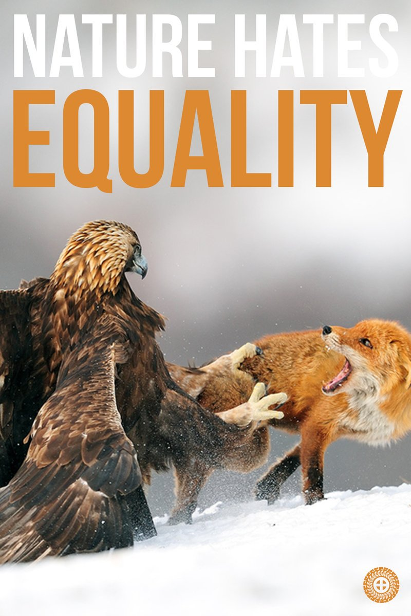 Nature hates equality